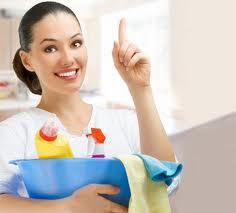 Pro Cleaners Sydney